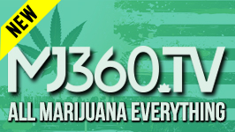 MJ360 && MJ360.tv is devoted entirely to the cannabis lifestyle, including news, talk shows, viral videos, documentaries, films, music videos, live performances, interviews and much more.