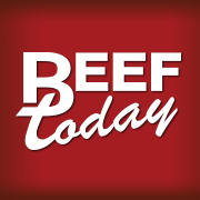 Beef Today