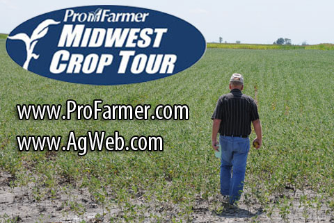Master Scout Talks About Ohio Crops