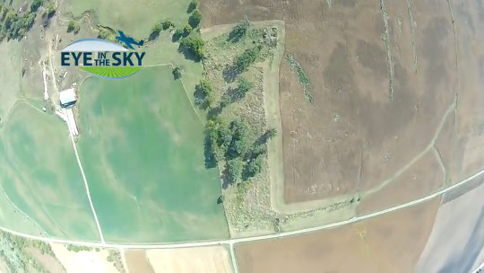 Eye in the Sky: Illinois Yields Hold