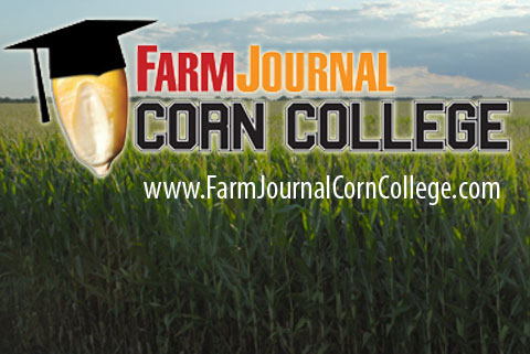 Making $ At Corn College