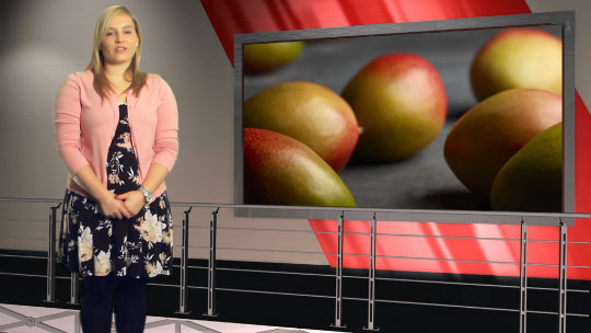 Big South American mango crops expected