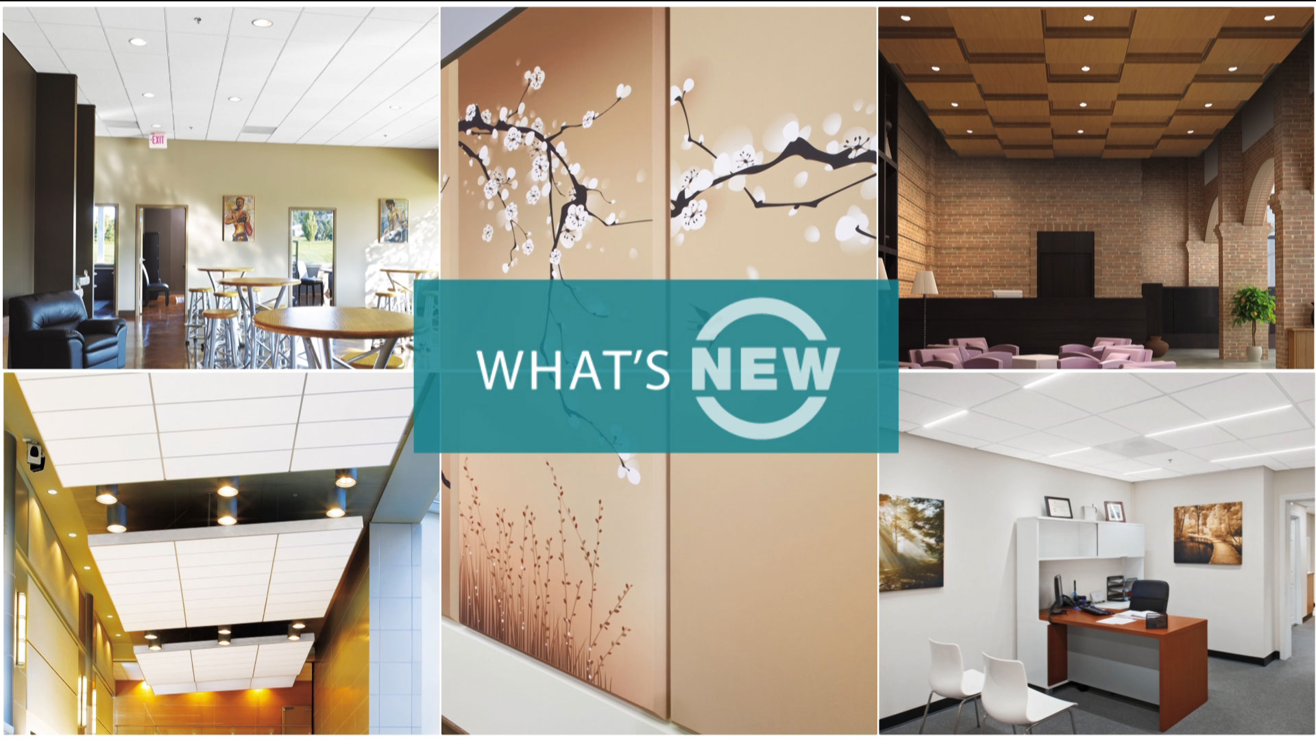 What's New in Commercial Ceilings Fall 2013